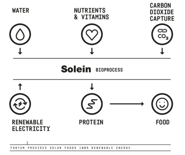 Energetic-Consulting-Solein